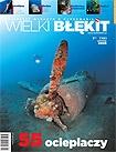 Wielki Błękit nr 7/2005